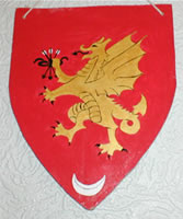 Small shield
